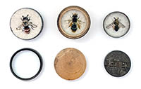 Three stitched and felted bees in small round cases.