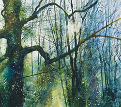 Coloured print featuring light shining through trees.